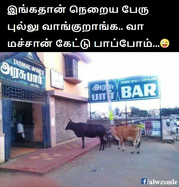 Tamil Comedy Images tamil Politics Images (9)